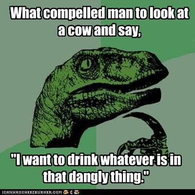 cow,dangly things,milk,philosoraptor,udders