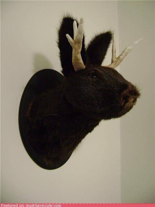 antlers bust craft dye Jackalope mounted wall hanging - 4438149632