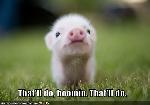 babe,caption,captioned,content,good enough,happy,Movie,pig,quote,thatll-do