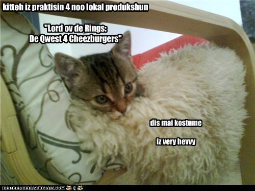 Cheezburger Image 4438633216