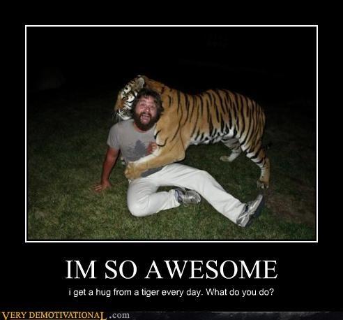 animal awesome hugs scary tiger - 4439329536