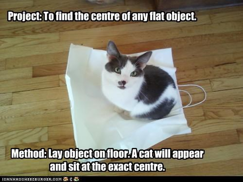 Project: To find the centre of any flat object. Method: Lay object on floor. A cat will appear and sit at the exact centre.