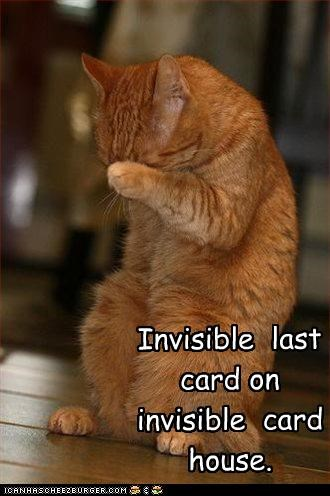 building caption captioned card card house cat concentrating concentration construction house invisible last tabby