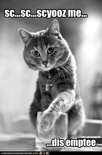 black and white caption captioned cat empty excuse me fyi glass just saying polite Sad this - 4440598784