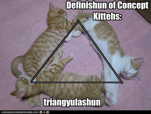 caption captioned cat Cats concept definition definition of concept explanation kitten math proof sleeping triangulation - 4441088768