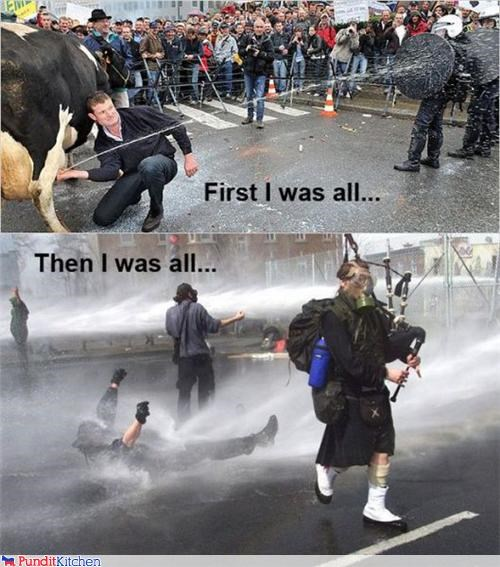 cow,hose,milk,ouch,protesters,riots