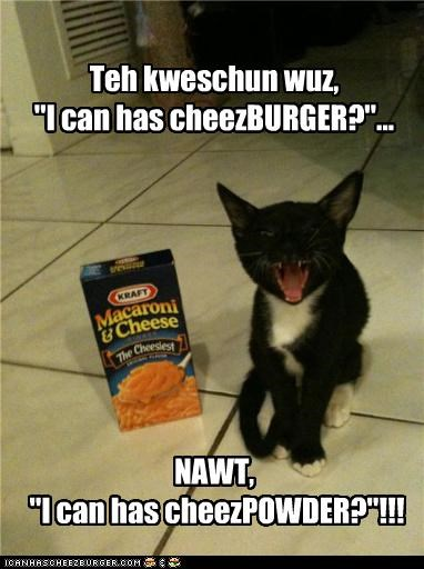 Cheezburger Image 4442976000