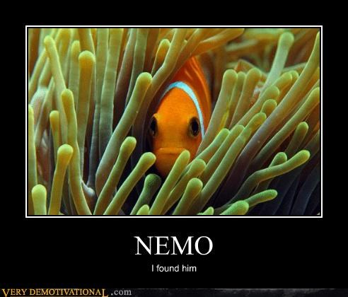 NEMO I found him
