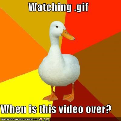 animated gif,Technologically Impaired Duck,Video,watching,when is it over