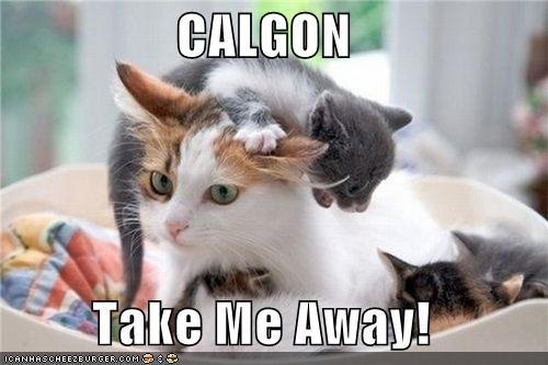 CALGON Take Me Away! - Cheezburger - Funny Memes   Funny ...