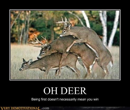OH DEER Being first doesn't necessarily mean you win