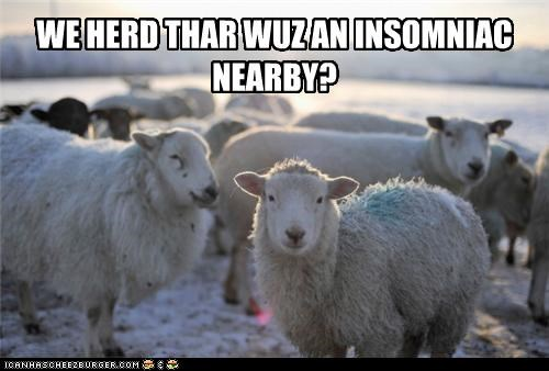 asking,caption,captioned,heard,herd,insomniac,nearby,question,sheep,summoned