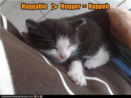 Cheezburger Image 4444518912