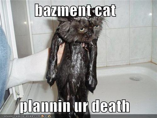 bazment cat  plannin ur death
