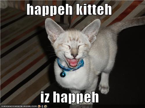 happeh kitteh  iz happeh