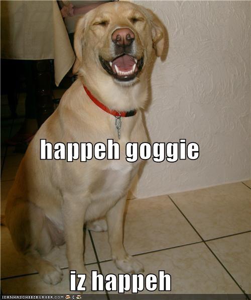 happeh goggie iz happeh