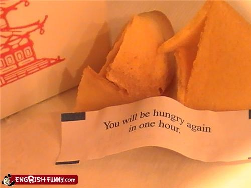chinese food fortune cookie hungry - 4445240320