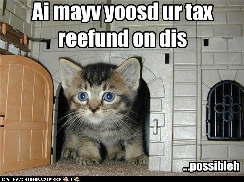 caption,captioned,castle,cat,hypothetically,just saying,kitten,money,oops,purchase,refund,spending,tax,tax return,used