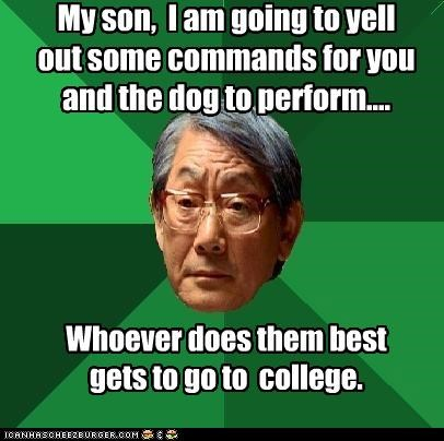 college dog training high expectations asian dad kid training who-will-win - 4446052352
