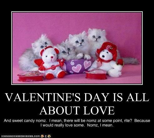 bunnies,ferrets,heart,heartbreak,hearts,Interspecies Love,love,otters,package post,relationships,Sad,vain,valentines,Valentines day,vanity