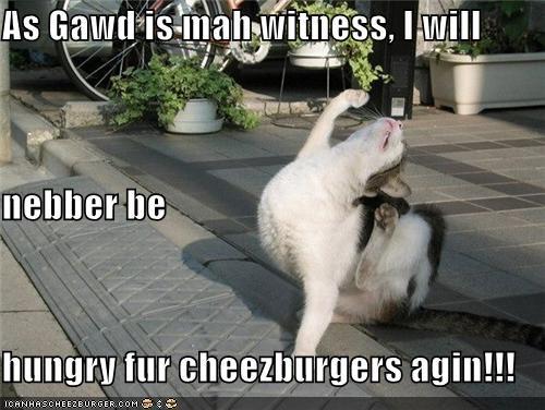 Cheezburger Image 4446309632