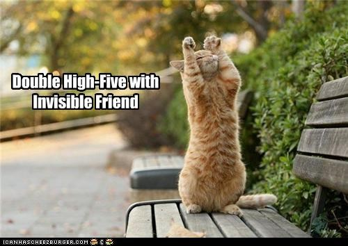 caption,captioned,cat,congrats,congratulating,double,friend,high five,invisible,tabby