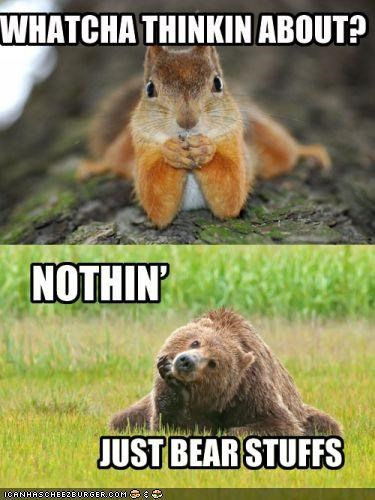 bear bears caption captioned cute multipanel silly squirrel squirrels sweet thinking - 4447727104