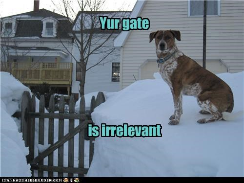 Yur gate is irrelevant