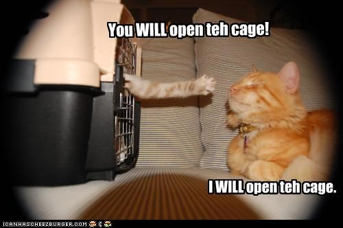 You WILL open teh cage! I WILL open teh cage.