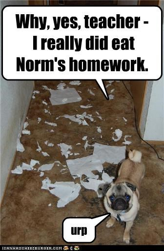 Why, yes, teacher - I really did eat Norm's homework. urp