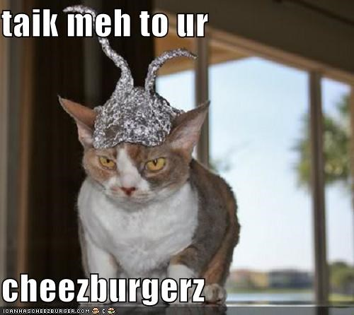 Cheezburger Image 4449464832