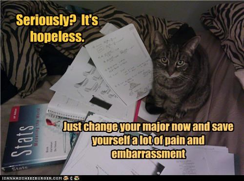advice caption captioned cat change embarrassment Hall of Fame hopeless major now pain recommendation save seriously suggestion - 4450111488