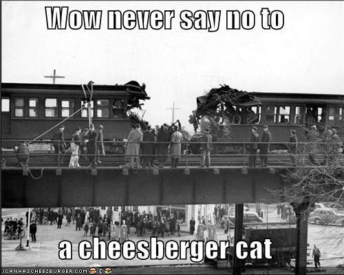 Cheezburger Image 4450386944