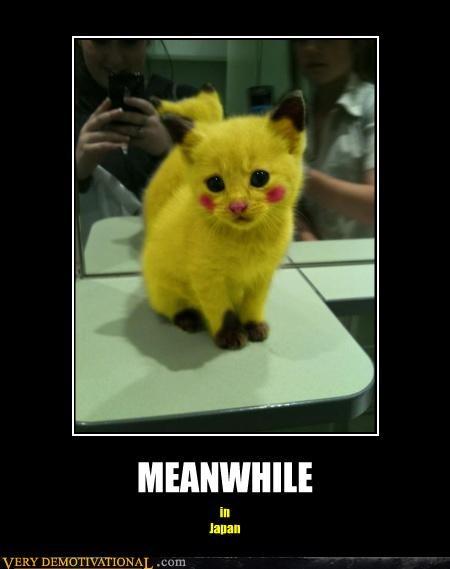 cat Japan kitty Pokémon - 4450630656