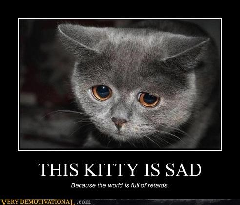 kitty retards Sad - 4451345920
