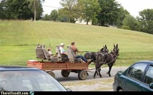 cars dual use horse trailers wtf - 4451470080