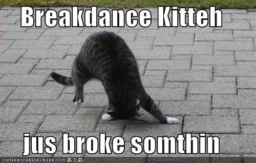 borked breakdance breakdancing cyoot kitteh of teh day hurt - 445260544