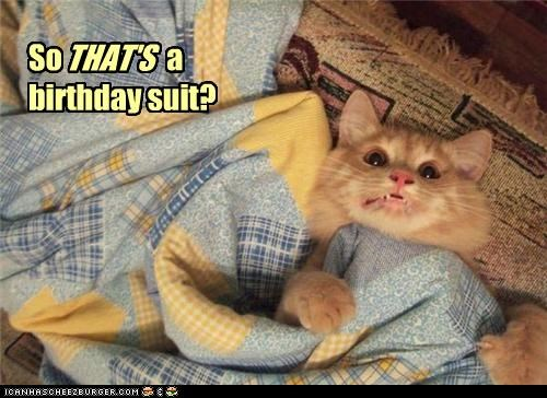 au natural birthday suit caption captioned cat do not want gross grossed out horrified horror human mortified realization repulsed seeing that what has been seen - 4453641984
