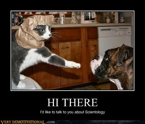 scientology cat wtf dogs - 4454578688