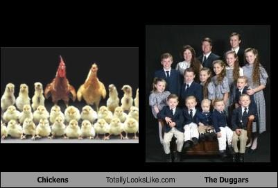 chickens children family farm animals Hall of Fame the duggars