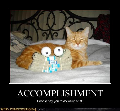 cat,people,accomplishment,weird