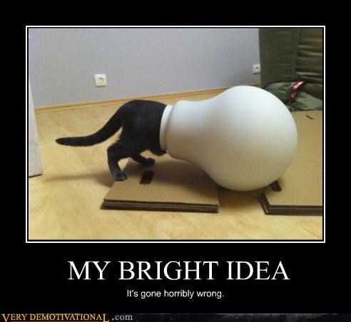 cat bad idea wrong lightbulb
