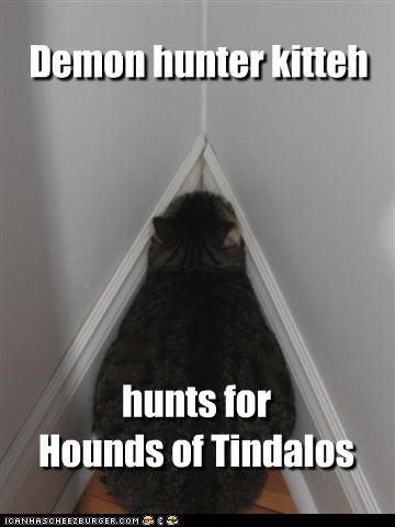 Demon hunter kitteh hunts for Hounds of Tindalos
