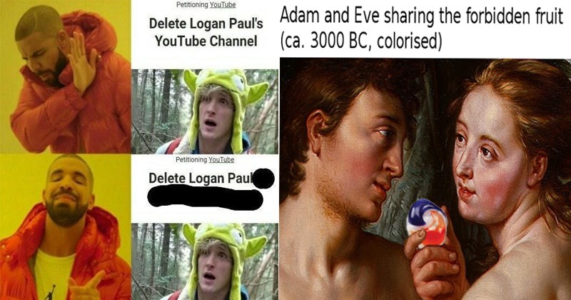 Funny memes, logan paul, porn, anxiety, breakfast, amazon, paul brothers, suicide forest, star wars.