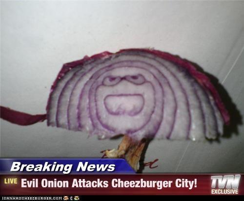 Cheezburger Image 4456744960