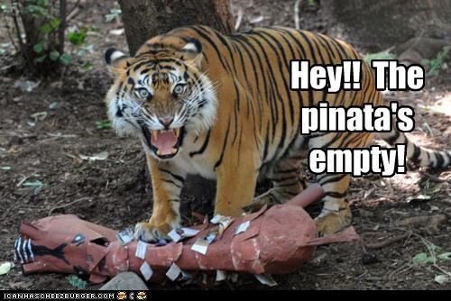 Hey!! The pinata's empty!