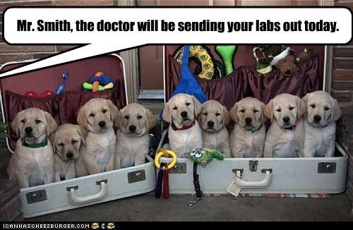Mr. Smith, the doctor will be sending your labs out today.