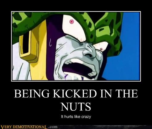 kick cell Dragon Ball Z groin
