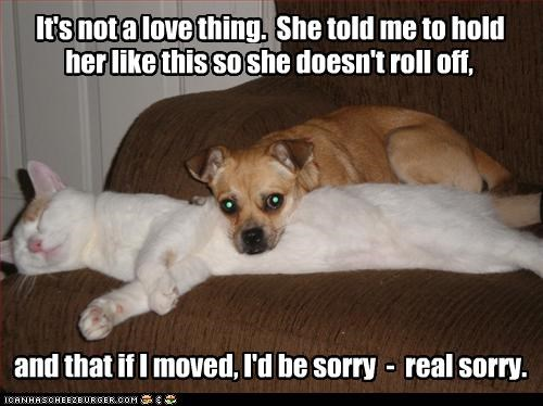 her like this so she doesn't roll off, and that if I moved, I'd be sorry - real sorry. It's not a love thing. She told me to hold