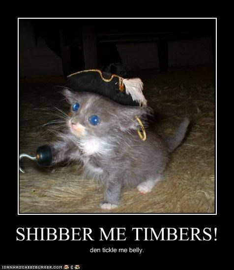 SHIBBER ME TIMBERS! den tickle me belly.